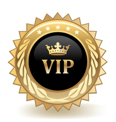 VIP Crown vector image