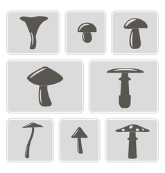 monochrome icons with mushrooms vector image