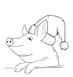 A pig sketch in a new year hat vector