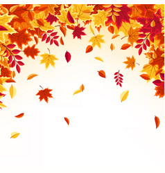 Autumn falling leaves nature background with red vector
