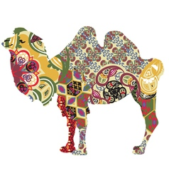 Camel in ethnic patterns vector