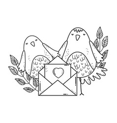 cute little birds couple with envelope lovely vector image