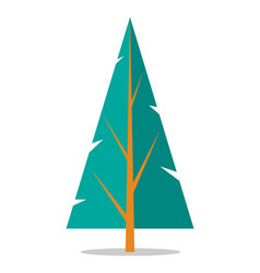 Flat spruce icon isolated on white vector