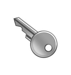 key metal vector image