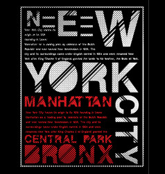 newyork typography graphic design vector image