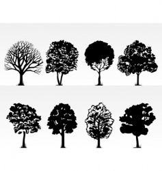 park trees vector image
