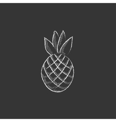 Pineapple Drawn in chalk icon vector
