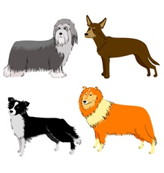 breeds set vector image vector image