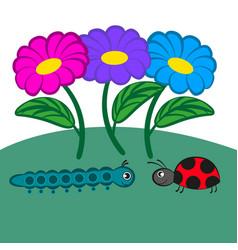 cartoon caterpillar and ladybug vector image
