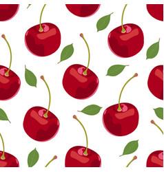cherry fruits seamless pattern fresh organic vector image