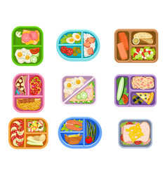 flat set of lunch boxes plastic trays with vector image