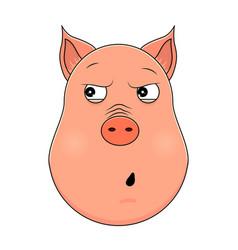 head of paranoid pig in cartoon style kawaii vector image