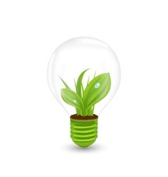 Lamp with Green Grass Inside vector image