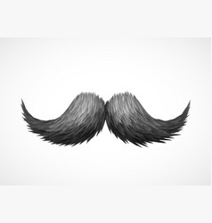 old style mustache vector image