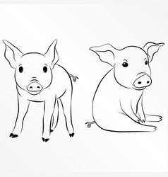 pig piglet piggy swine hog eps 10 vector image