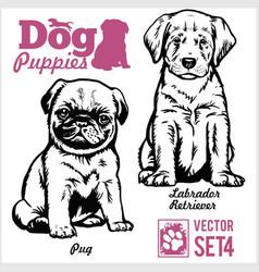 Pug and labrador retriever - dog puppies vector