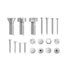 realistic detailed 3d makeup metal screws and vector image