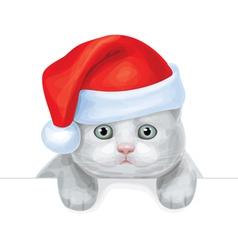 santa cat vector image