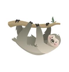sloth tropical jungle circus or zoo animal vector image