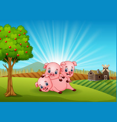 Three little pig playing in the farm vector