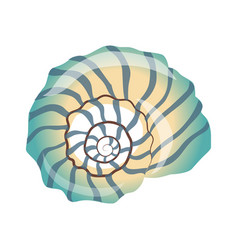 Beautiful blue seashell an empty shell of a sea vector