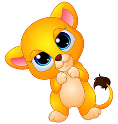 cute baby lion cartoon vector image