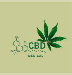hemp oil is extracted for cure many vector image