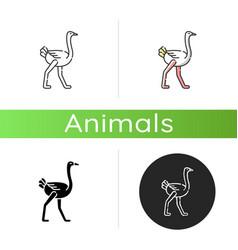 Ostrich icon vector