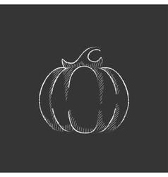 Pumpkin Drawn in chalk icon vector