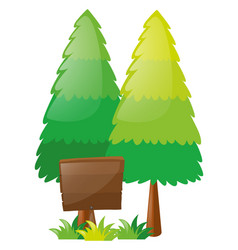 wooden sign and two pine trees vector image