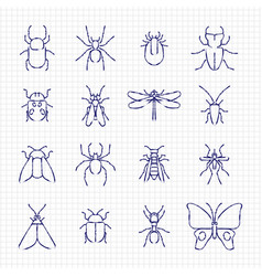 sketch drawing line insect icons collection vector image