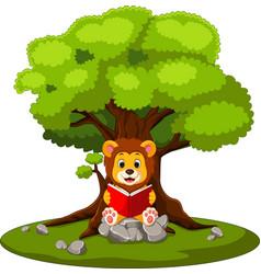 cartoon lion reading book vector image vector image