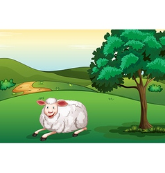 A smiling sheep vector image vector image