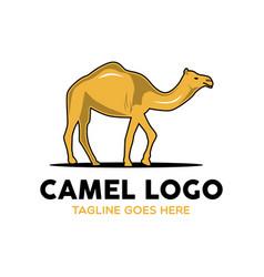 camel logo-3 vector image vector image