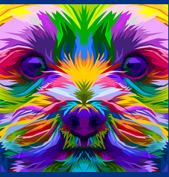 colorful close up yorkshire terrier dog vector image