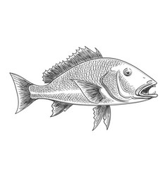 Fish retro ink sketch vector