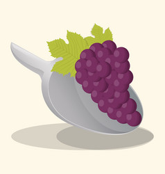 Grape vegan food fresh vector