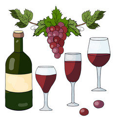 set of hand drawn elements bottle with red wine vector image