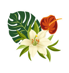 tropical flowers and leaves elegant floral vector image vector image
