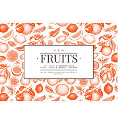 Citrus design template hand drawn fruit engraved vector