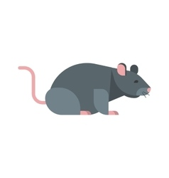 Rat mouse vector