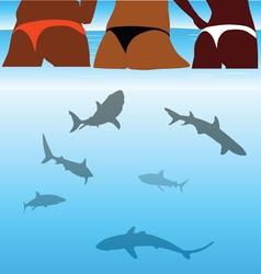 shark and beauty bikini girl vector image