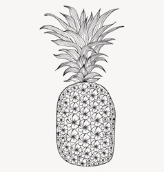 Hand-drawn pineapple on white background vector image