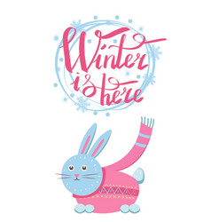 winter is here little gray hare in sweater icon vector image