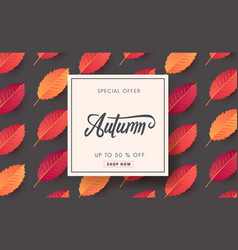 autumn 06 vector image