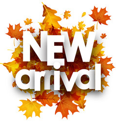 autumn new arrival poster with leaves vector image