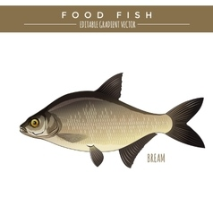 Bream food fish vector