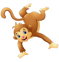 Dancing monkey on white background vector