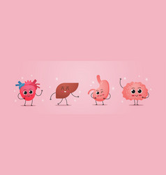 Funny anatomical mascot heart liver stomach brain vector