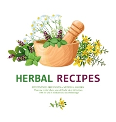 Medicinal herbs in mortar vector